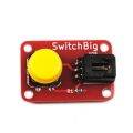 Big Button Switch